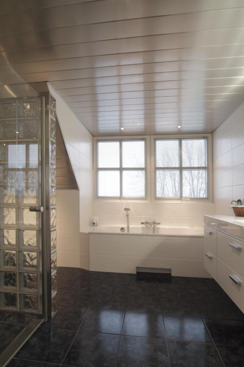 http://www.plafondbadkamer.nl/index_htm_files/108.jpg